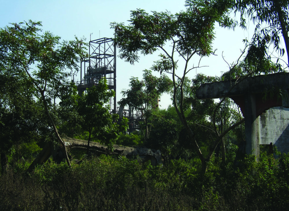At the abandoned factory grounds in Bhopal, vegetation has overtaken the MIC unit.