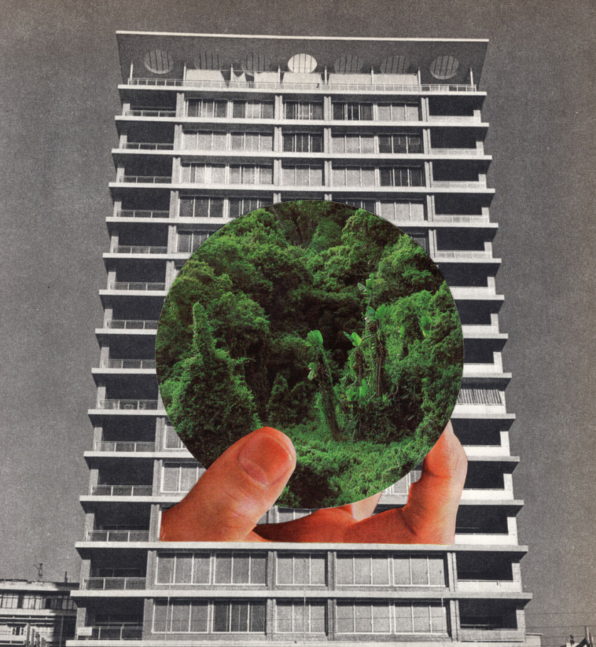 A hand holding a ball of bright vegetation is juxtaposed over a washed out apartment building block.