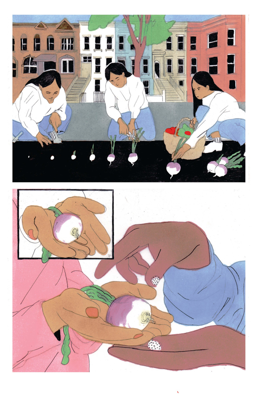Split into two frames, the top half is three women planting turnips in an urban setting. The bottom half are hands holding turnips with open palms.