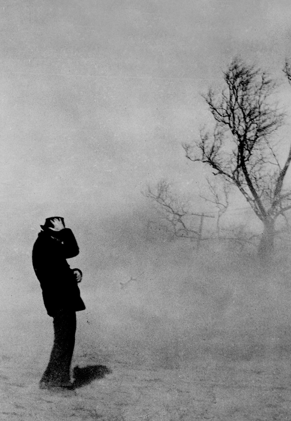 A man tries to hold onto his hand during a dust storm next to a desolate tree.